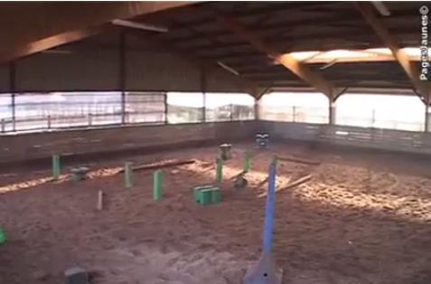 Le manège poneys
