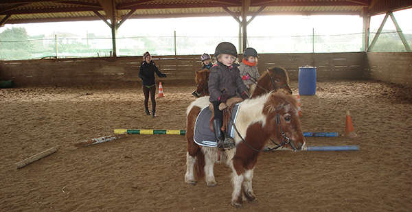 Baby poney à 4 ans